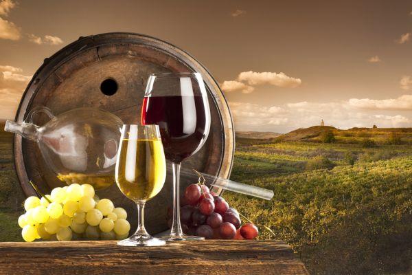 Konzumirajte vrhunska vina...